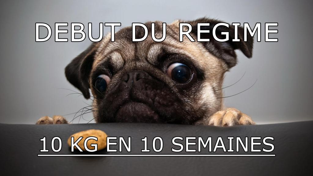 regim 10 kg
